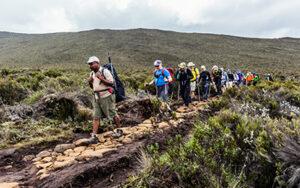 Expeditionsresor till Kilimanjaro – hur du bäst förbereder dig